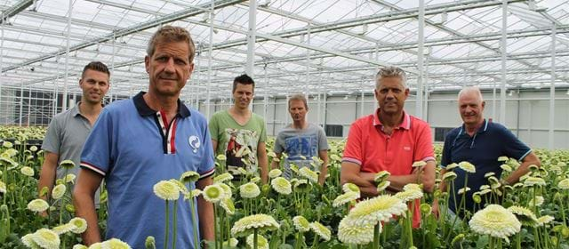 Grower of the week! Holstein Flowers